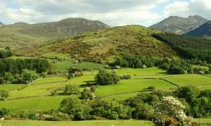 Mourne country near Bryansford (4)