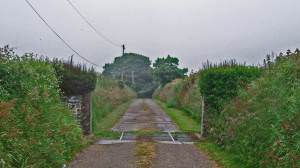 Track leading from main road south of New Quay