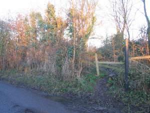 Footpath - Rowley