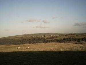 Farmland by Warcombe Lane