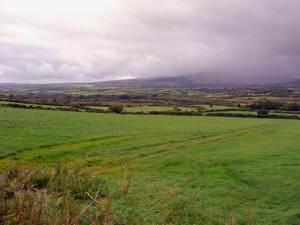 Fields near Iet-y-bwlch, Llandissilio