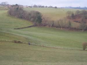 The Frolic Farm near Dolforwyn Castle, Powys