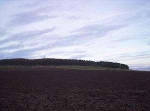 Woodstone Hill