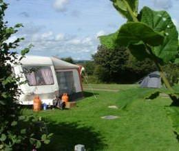 Bodmin Campsite, Cornwall - Glenmorris Park