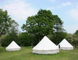 Michelcombe farm campsite
