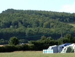 Caravan Field View