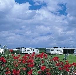 Woodhill Park Caravans