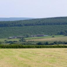 Middle Woodbatch Farm