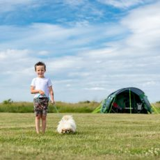 MB_camping_boy_dog_900x600.jpg