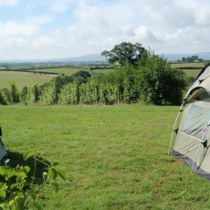 Ten Acres Campsite Field