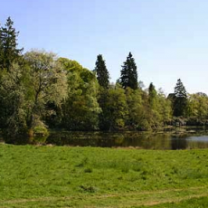 Beattock Country Park