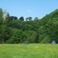 brow farm campsite