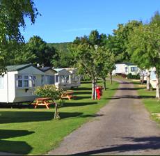 bucklegrove-campsite.png