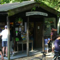 Dorset Campsite, Burnbake Shop