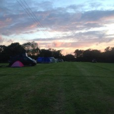 Chapelfield campsite, new forest.