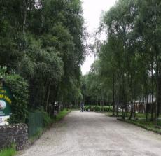 gleneskcaravanpark.png
