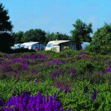 kellingheath-campsite.png