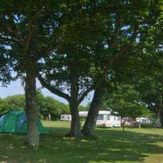 ridgefarm-campsite.png