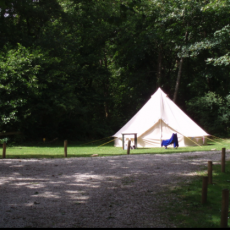 Ruthern Valley Holidays, Camping Pitch