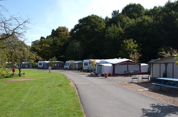 Sherwood Forest Camping >> Sherwood Forest Caravan Park