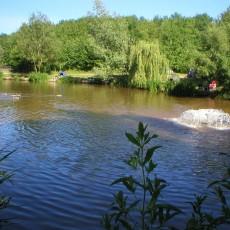 trefaldu-fishery-campsite.jpg