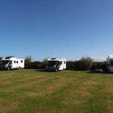 tynewydd campsite pitches