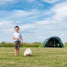 MB_camping_boy_dog_900x600.jpg