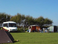 California Barn Campsite